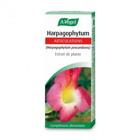 Harpagophytum extrait de plante fraiche