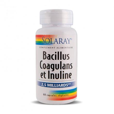 Bacillus coagulans et inuline