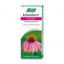 Echinaforce extrait de plante fraiche