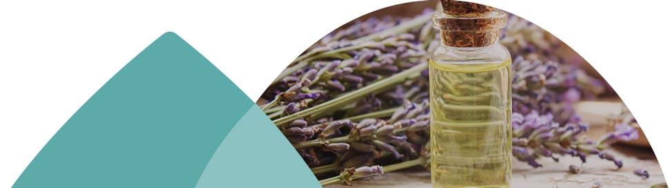 Cure d'aromathérapie à la lavande