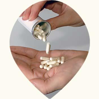 Probiotiques en complément gélule