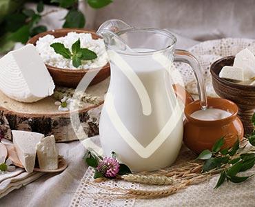Produits laitiers riches en ferments lactiques