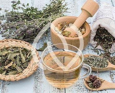 Phytothérapie, ou l'utlisation des vertus des plantes pour la santé